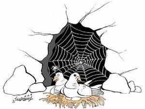 قصة العنكبوت والحمامتين في الغار أغاليط تاريخية قصة الإسلام