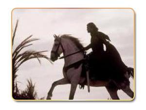 عبد الرحمن الداخل .. القائد والإنسان